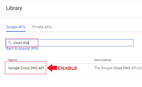 search for cloud dns and then enable the cloud dns api on the next page